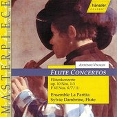 Flute Concerto F VI, No. 7 A Minor: Larghetto