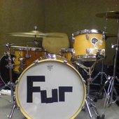 Electric Furs