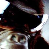 Loco Gorilla