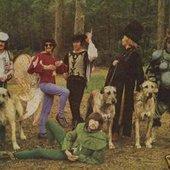Bonzo Dog (Doo Dah) Band
