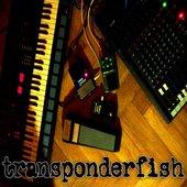 transponderfish