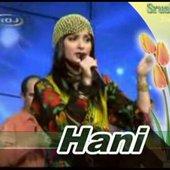Kurdish HANI
