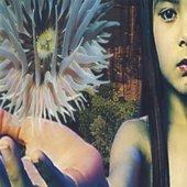 Lifeforms - CD1