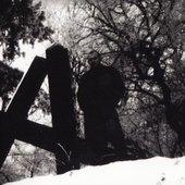 """Dark Fury (from booklet \""""Vae Victis!\"""")"""