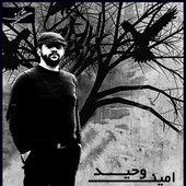 Amin Vahid