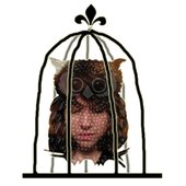 Aubrey and the Owl