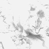 Humming Kitten
