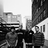 THE SWELLERS 2010