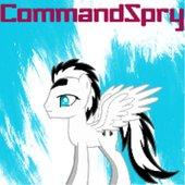 CommandSpry
