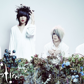 Plastic Tree ~New Look to - 落花- Rakka- Release ~