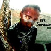 www.SevidemiC.com