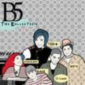 B5 The collection