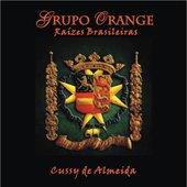 Grupo Orange