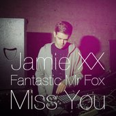 Jamie xx & Fantastic Mr. Fox