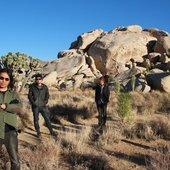 Navicula in Joshua Tree USA - 2012