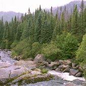 Grands Jardins: Petite Rivière Malbaie