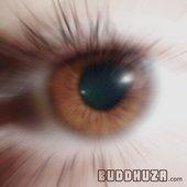 Buddhuza.com