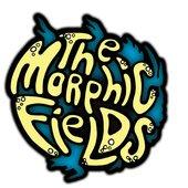 The Morphic Fields