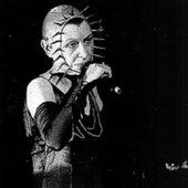 Brigitte Fontaine en scene