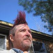 Pink Mohawk Man surveys his domain.