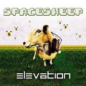 Spacesheep