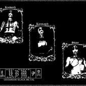 Band 2008-2011