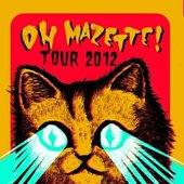 tour-flyer 2012