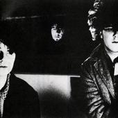 Cocteau Twins, 1983