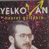 Gültekin - Yelkovan
