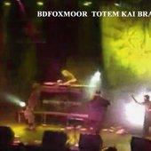 B.D.Foxmoor feat. Brak & Totem