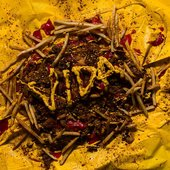 VIDA - S/T EP