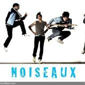 Noiseauxbanner