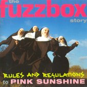 Rules And Regulations To Pink Sunshine: The Fuzzbox Story 2