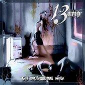 13 Amp