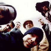 The Herbaliser Band