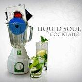 Liquid Soul & Perfect Stranger