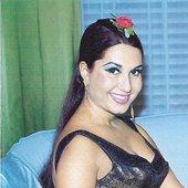 Taroub
