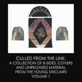 Culled From the Link: A Collection of Demos, Covers, & Previously Unreleased Material