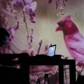 Seirom - Live at Simplon / groningen
