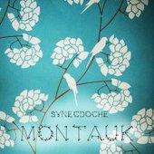 Synecdoche Montauk