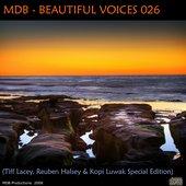 Symphony Of Soul (Reuben Halsey Chillout Mix)