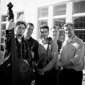 The Foggy Hogtown Boys