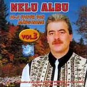 Nelu Albu