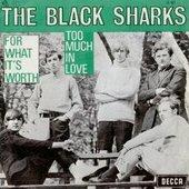 The Black Sharks