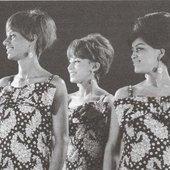 Velvelettes 1967