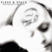 Flesh & Space