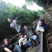 LIVID band
