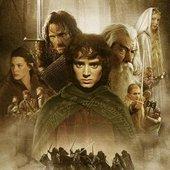 Fellowship of Ring