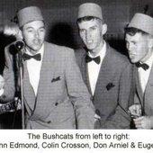 John Edmond in the Bushcats