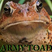 Army Toad